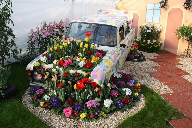 цветы для двора фото модулях можно